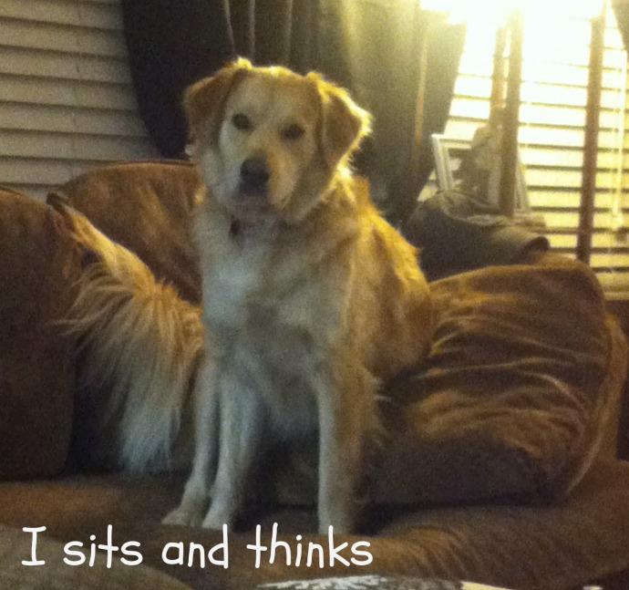 Mar sits