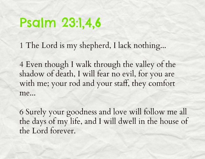 psalm 23146